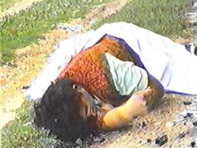 http://www.hercegbosna.org/slike_upload/20100914/velicina1/herceg_bosna201009141532280.jpg